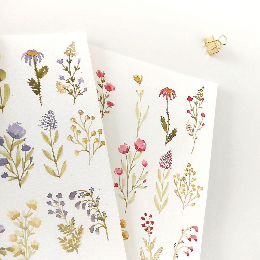 2 illustrations d'herbier fait à l'aquarelle par creakoa lors d'un tuto