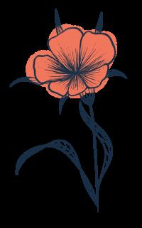 Illustration d'un fleur sauvage creakoa